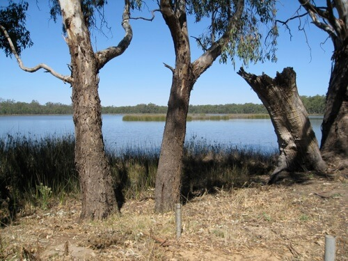 Lake Moodemere (aboriginal name Bulgeaba meaning black swan) was a favourite encampment spot for aborigines where ceremonies were held.