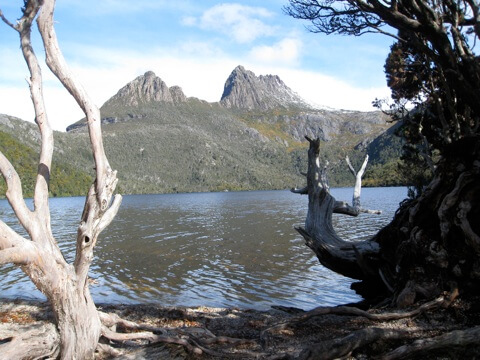 View of Cradle Mountain across Dove Lake